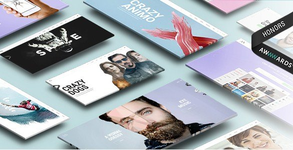 Animo – Creative & Clean Multi