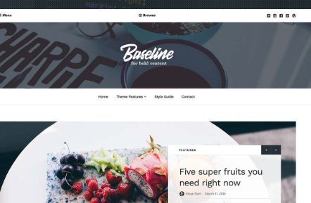 Array Themes Baseline WordPress Theme 1.2.9