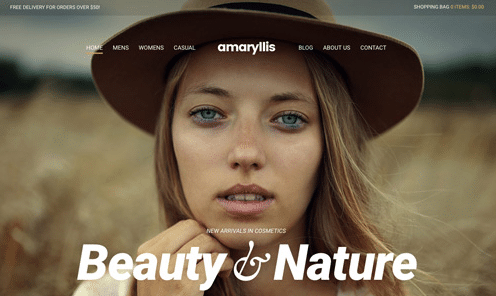 CSS Igniter Amaryllis WordPress Theme 1.9