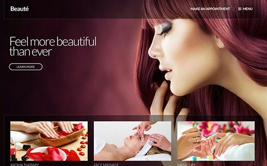 CSS Igniter Beaute WordPress Theme 1.8