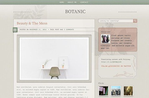 CSS Igniter Botanic WordPress Theme 1.7