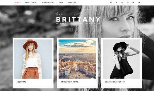 CSS Igniter Brittany WordPress Theme 1.6