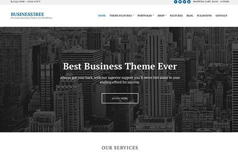 CSS Igniter Business3ree WordPress Theme 2.2