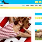 CSS Igniter Doberman WordPress Theme 1.3.2