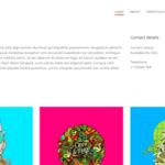 CSS Igniter Hellomouse WordPress Theme 1.1.1