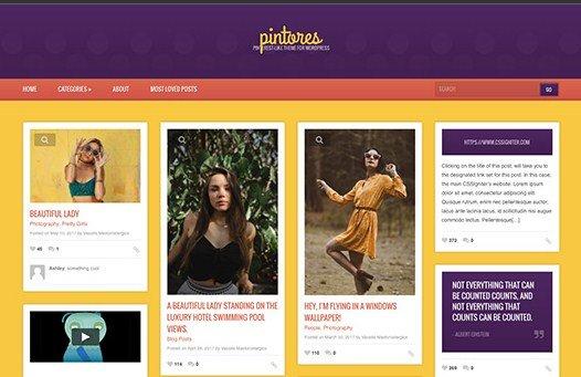 CSS Igniter Pintores WordPress Theme 1.7