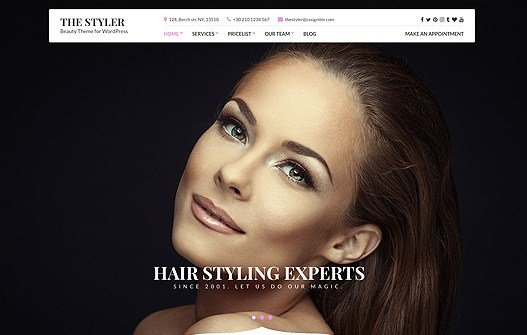 CSS Igniter The Styler WordPress Theme 1.3.1