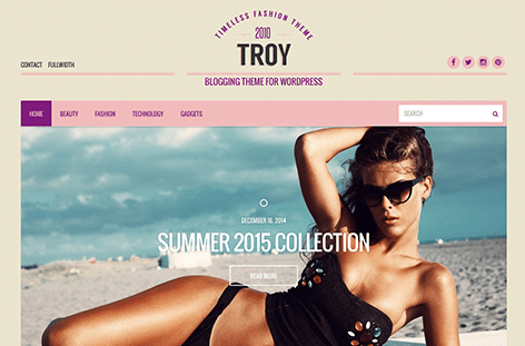 CSS Igniter Troy WordPress Theme 2.5