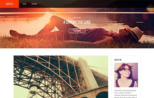CSS Igniter Uberto WordPress Theme 1.6