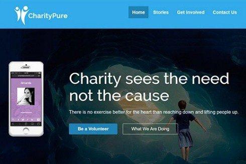 CyberChimps CharityPure WordPress Theme 1.4