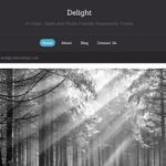 CyberChimps Delight WordPress Theme 1.0.0.4