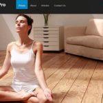 CyberChimps Fitness Pro WordPress Theme 1.2