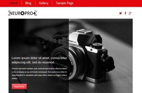 CyberChimps Neuro Pro 4 WordPress Theme 4.1