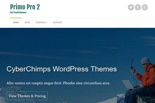 CyberChimps Primo Pro 2 WordPress Theme 1.2