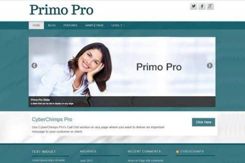 CyberChimps Primo Pro WordPress Theme 1.5