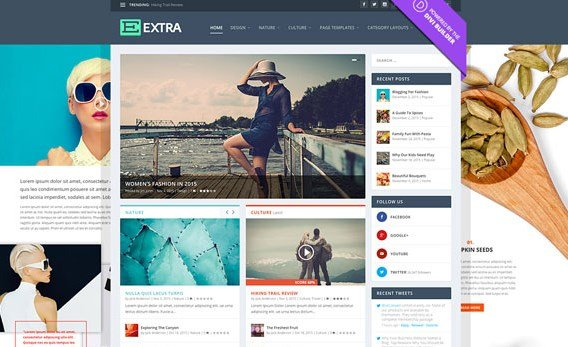 Elegant Themes Extra Wordpress Theme 2.19.1