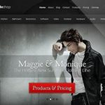 Elegant Themes StyleShop WooCommerce Themes 2.2.10