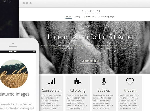 Thrive Themes Minus WordPress Theme 1.401.0