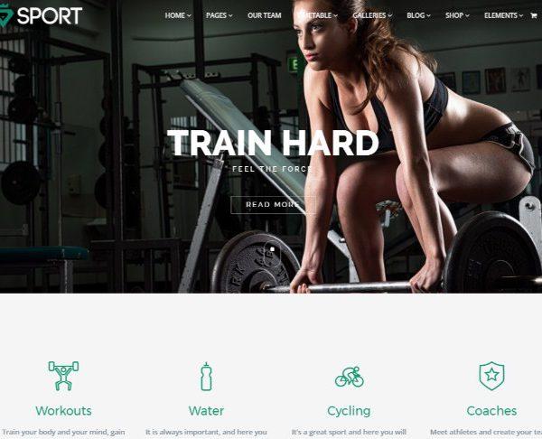 VisualModo Sport WordPress Theme 3.0.4