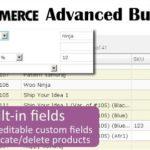 WooCommerce Advanced Bulk Edit 4.4.2