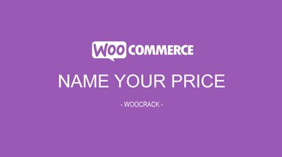 WooCommerce Name Your Price 2.9.3