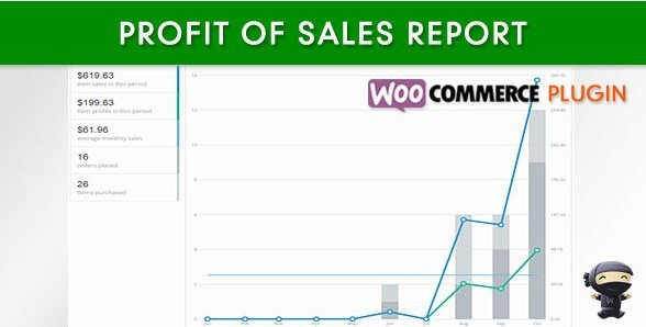 WooCommerce Profit of Sales Report 1.3.2