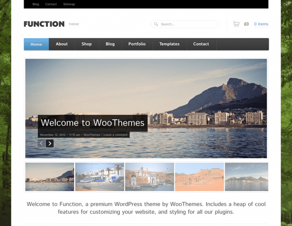 WooThemes Function WooCommerce Themes 1.4.13